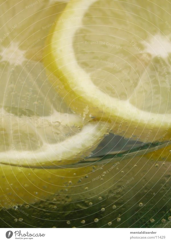 Water Summer Beach Yellow Warmth Ice Glass Fresh Beverage Cool (slang) Drinking Physics Bar Blow Alcoholic drinks Lemon