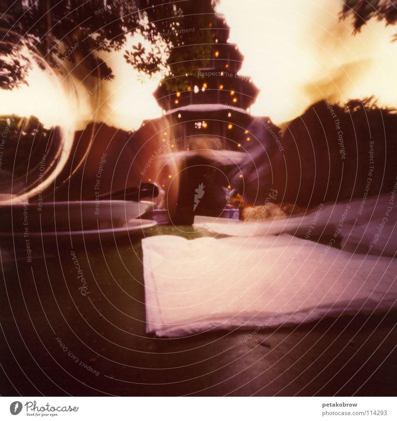 Bavaria Munich Traffic infrastructure Dusk Brunch Beer garden The Englischer Garten Chinese Tower