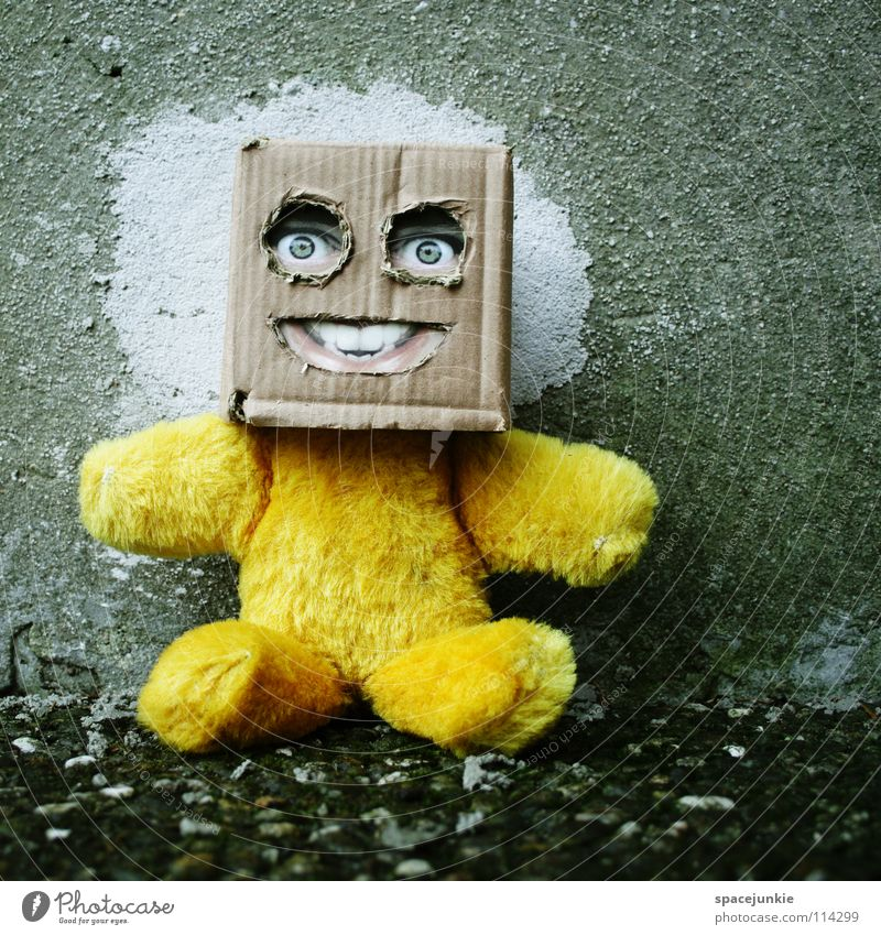 Back to concrete Cardboard Whimsical Humor Freak Square Glove puppet Toys Teddy bear Wall (building) Concrete Joy Face Mask Hiding place Hide square skull Doll