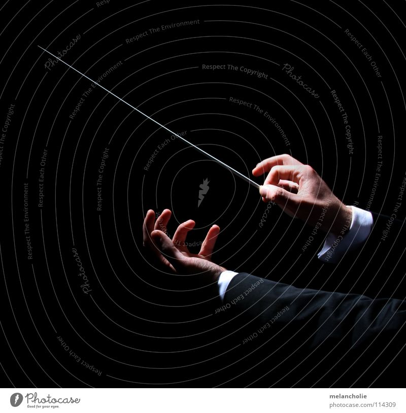 Conductor II Beat Fingers Hand Shadow play Concert Orchestra Audience Guest Opening Violinist Berlin State Opera Harmonious Emotions Practice Talented Compose