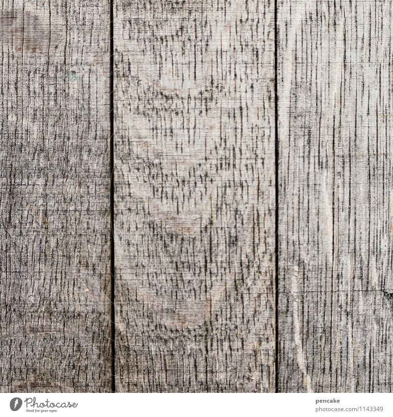 blank Nature Authentic Simple Clean Gray Wooden board Old Washed out Naked Empty Blank Plank Wood grain Colour photo Subdued colour Exterior shot Close-up