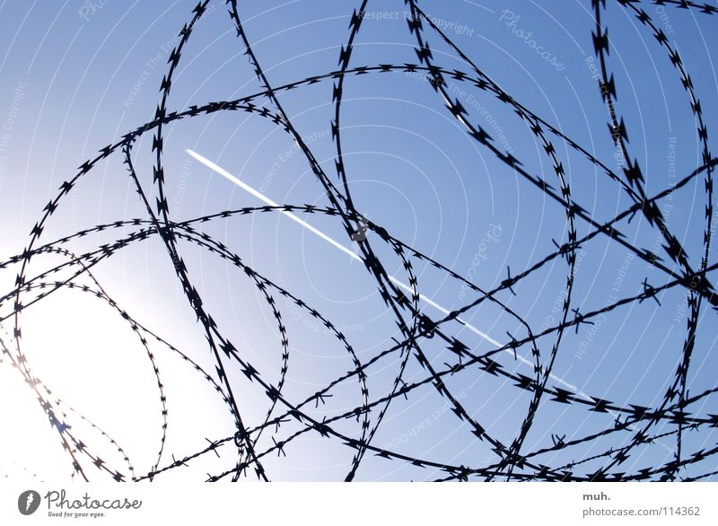 Boundless! Airplane Wire Fence Barbed wire Limit Border Airport Leisure and hobbies Sky Blue Vapor trail