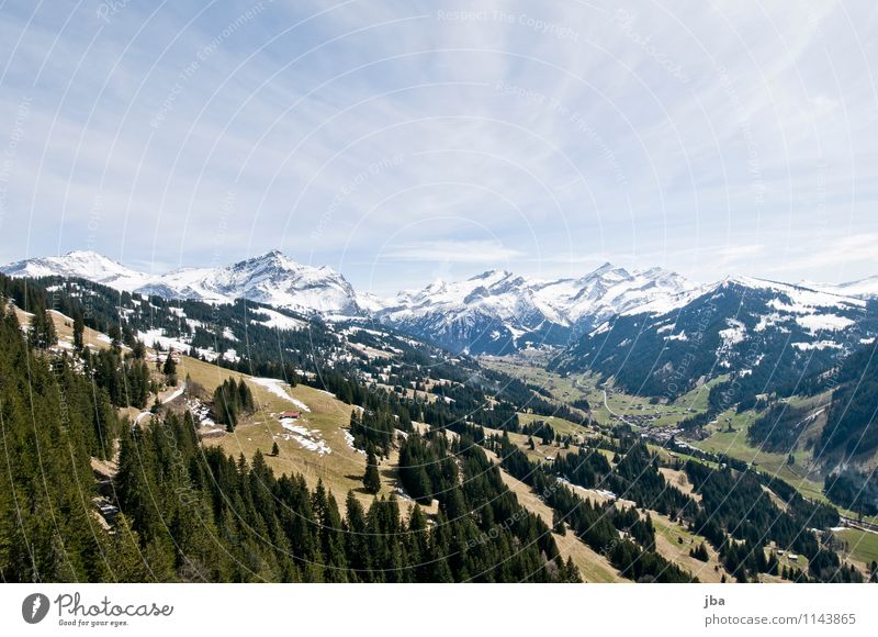 Sky Relaxation Landscape Calm Forest Mountain Life Spring Snow Sports Flying Leisure and hobbies Air Field Wind Trip