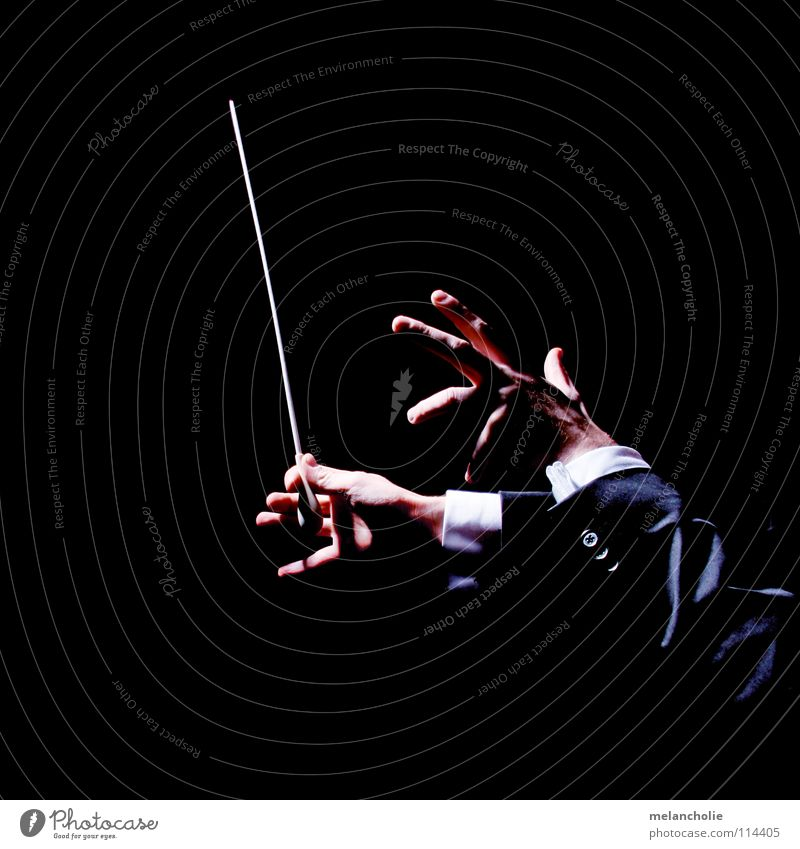 Conductor III Beat Fingers Hand Shadow play Concert Orchestra Audience Guest Opening Violinist Berlin State Opera Harmonious Emotions Practice Talented Compose
