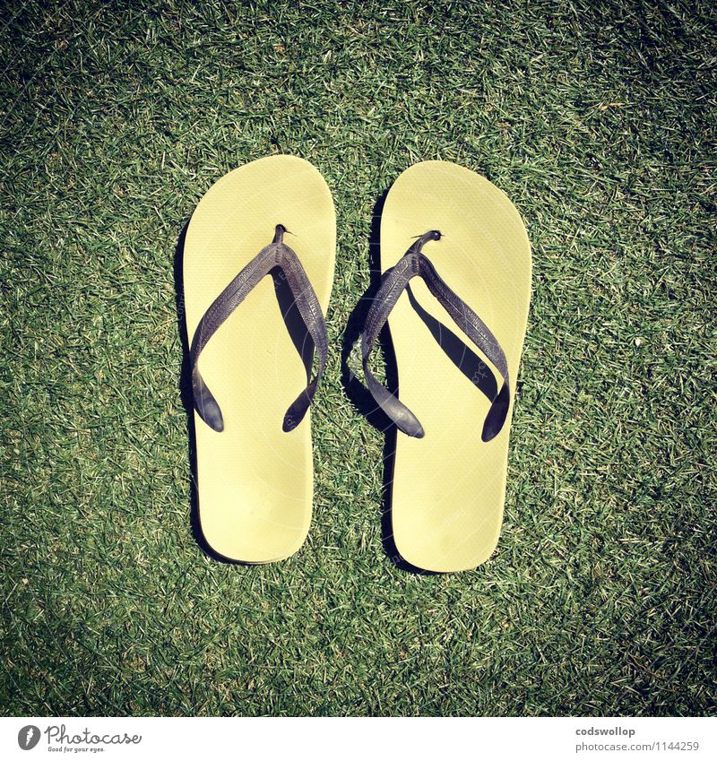 Eccles-Jordan circuits Summer Flip-flops Plastic Cheap Yellow Green Warm-heartedness Vacation & Travel Artificial lawn Colour photo Exterior shot Copy Space top