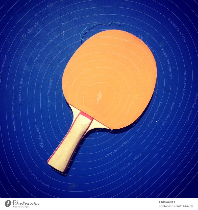 antitopspin with burls Sports Table tennis bat Wood Plastic Blue Orange Complementary colour Table tennis table Colour photo Multicoloured Exterior shot