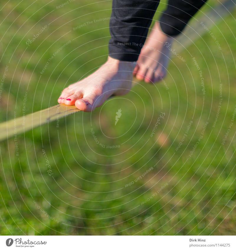 Slackline II 1 Human being Green Legs Feet Balance Narrow Complex Contentment Concentrate Barefoot Meadow Sports Rope Wirewalker Hip & trendy Gymnastics Summer