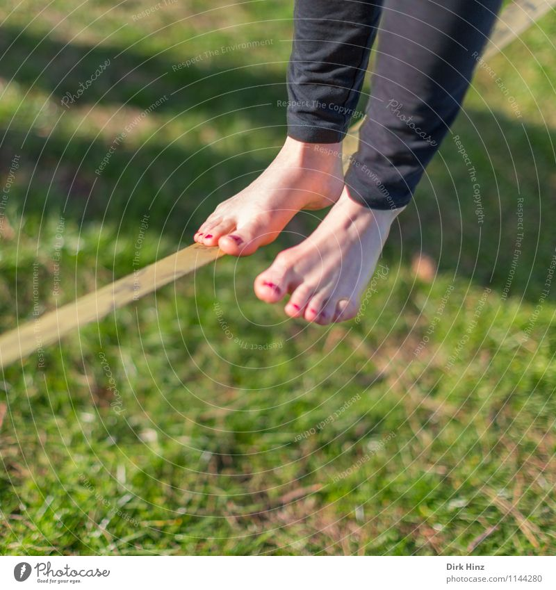 Slackline I Woman Adults Legs Feet 1 Human being Green Black Balance Narrow Complex Contentment Concentrate Barefoot Sports Movement Rope Wirewalker