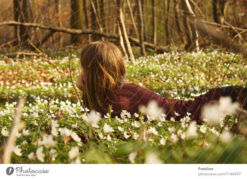 Human being Child Nature Youth (Young adults) Plant Green White Young woman Flower Landscape Girl Forest Environment Blossom Spring Natural