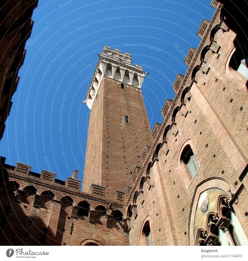 Palazzo Pubblico, Siena (Italy) Colour photo Exterior shot Deserted Day Worm's-eye view Culture Sky Europe Old town City hall Tower Manmade structures