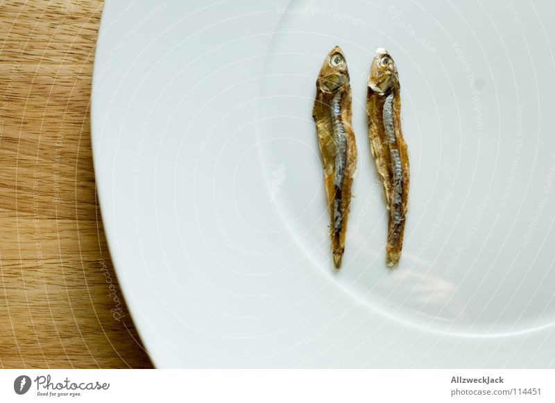 The Double Sprout 2 Dried fish Cat food Diet Numbers Dry Delicacy Gourmet Seafood Plate Wood Chopping board Loneliness Together Twin Gastronomy count down