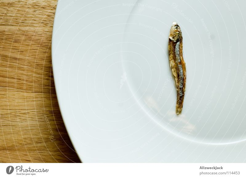 Loneliness Wood Fish Gastronomy Crockery Appetite Plate Downward Diet Chopping board Dry Numbers Dried Delicacy Gourmet
