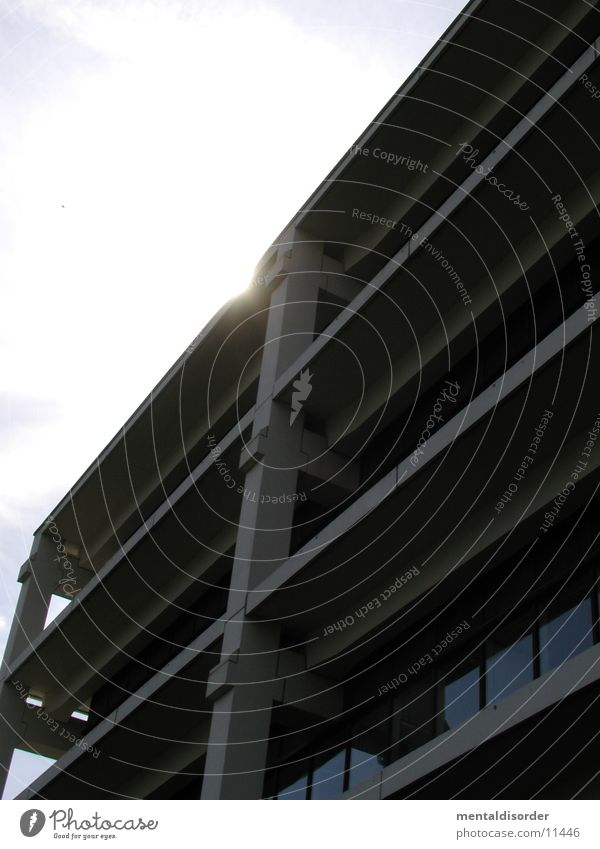Sun Architecture Concrete Steel Carrier