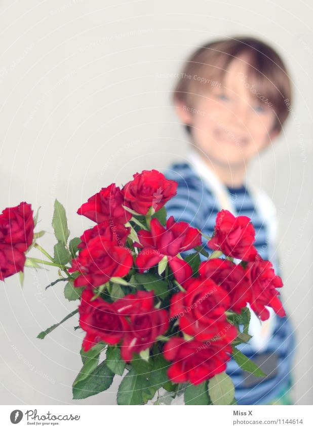 Human being Child Flower Emotions Love Boy (child) Laughter Feasts & Celebrations Moody Masculine Infancy Birthday Smiling Romance Rose Bouquet