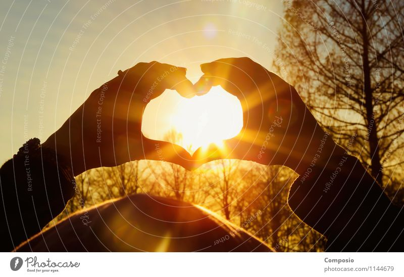 Heart / Sun Lifestyle Harmonious Leisure and hobbies Nature Sunrise Sunset Sunlight Beautiful weather Love Looking Esthetic Elegant Infinity Hot Orange Emotions