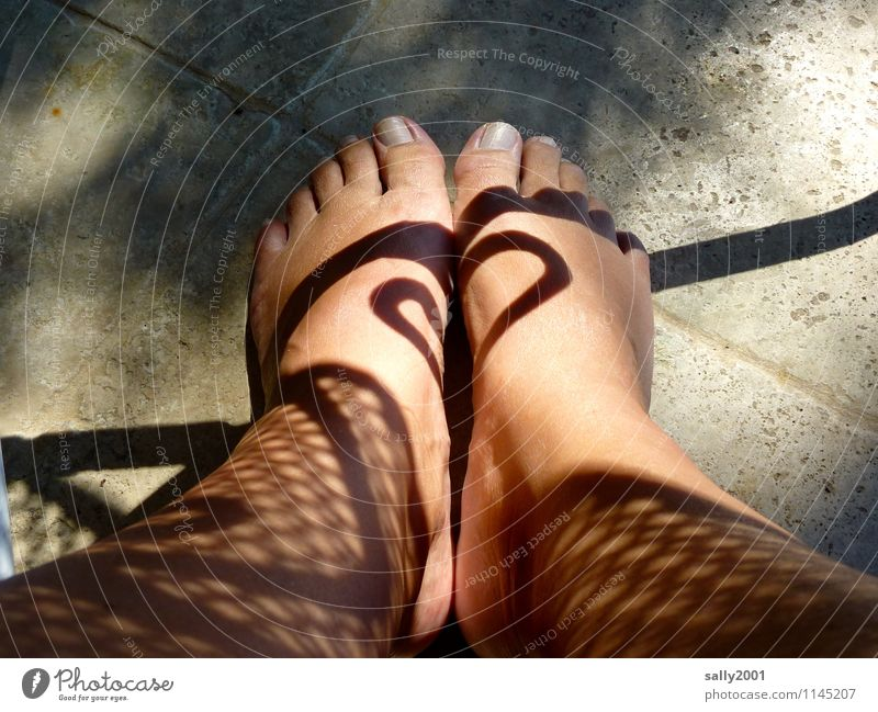 Sun instead of tattoo... Feminine Woman Adults Legs Feet 1 Human being Beautiful weather Illuminate Esthetic Exceptional Fantastic Naked Design Tattoo