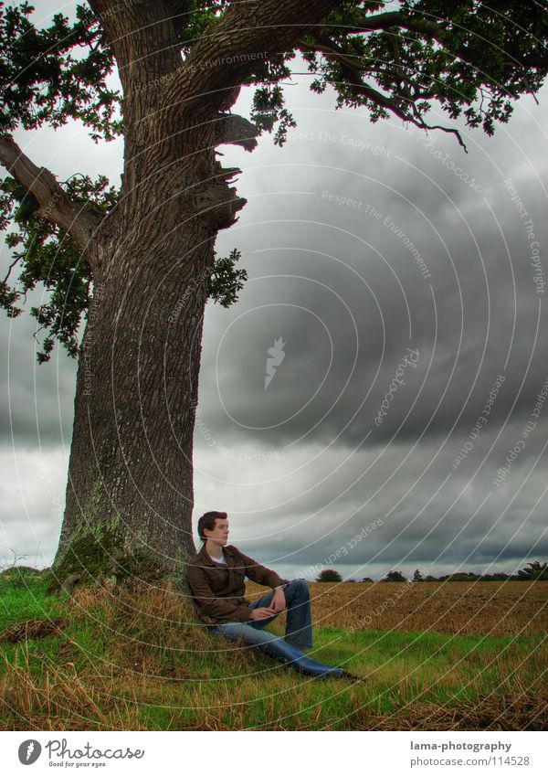 Man Nature Sky Tree Clouds Loneliness Far-off places Dark Cold Relaxation Autumn Meadow Freedom Gray Sadness Think