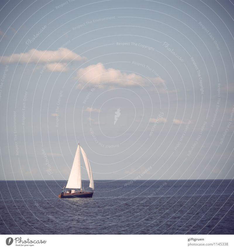 globetrotter Environment Nature Landscape Elements Water Sky Clouds Sun Summer Beautiful weather Waves Ocean Joy Sailing Leisure and hobbies Sailboat Sports