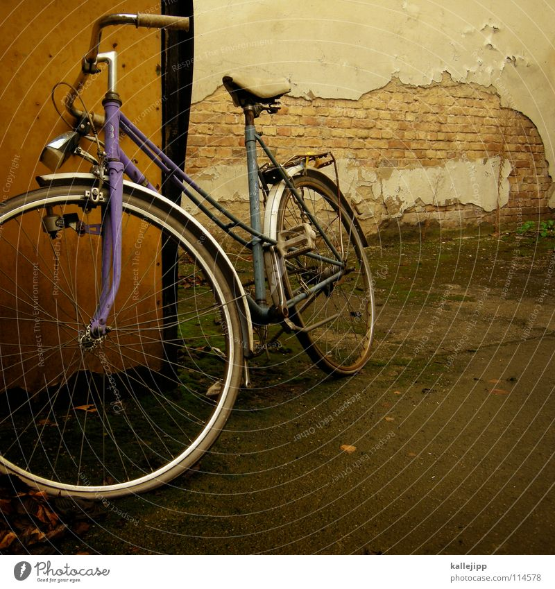 Green Lamp Grass Movement Wall (barrier) Bicycle Road traffic Transport Logistics Farm Wheel Steel Coat Ecological Seating Hose