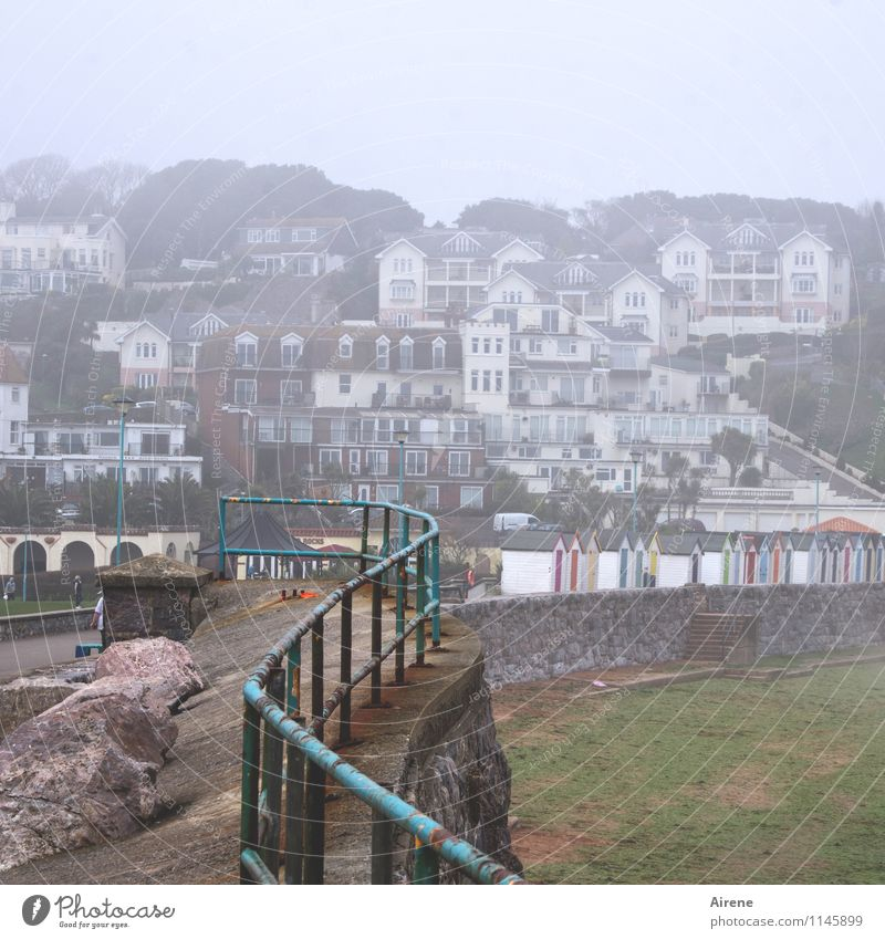 City by the sea Bad weather Fog Coast Beach England Devonian Village Small Town Port City Outskirts House (Residential Structure) Settlement slope development