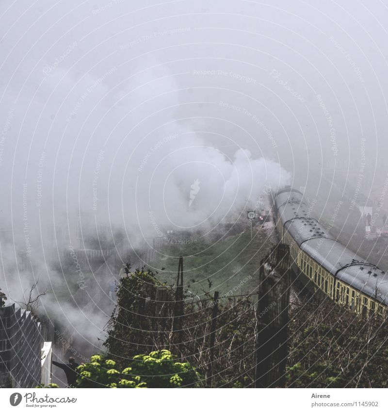 Vacation & Travel Clouds Dark Gray Fog Railroad Driving Passenger traffic Nostalgia Train station Steam Bad weather Platform Engines Train travel Rail transport