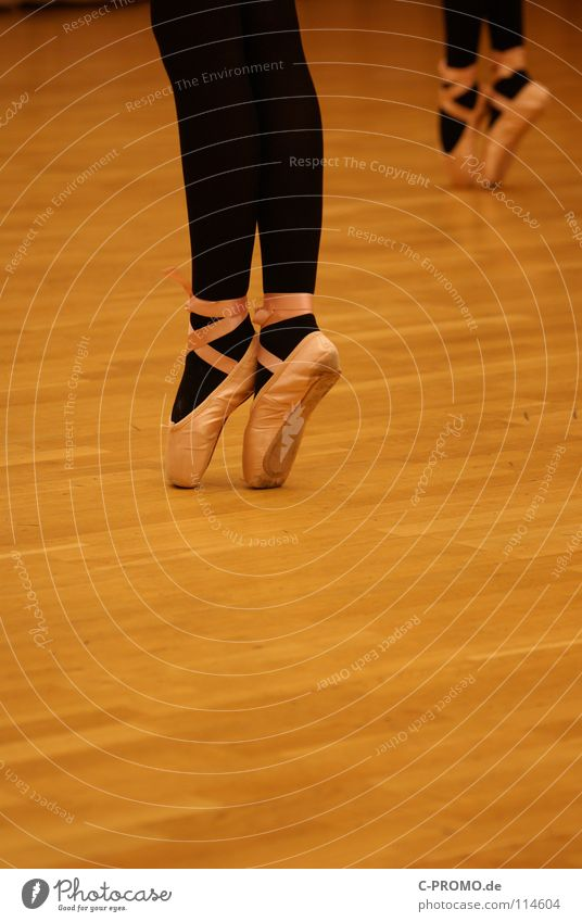 Ballet rehearsal II Parquet floor Black Swan Lake Past Vacation & Travel Concentrate Art Culture Dance Posture pointe shoes Sports Training Pattern Music