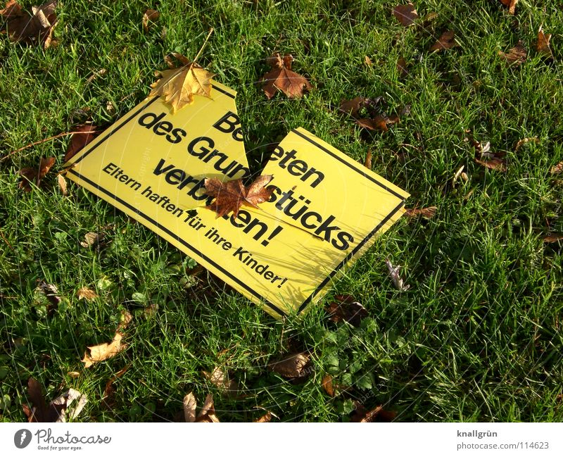 Green Leaf Yellow Autumn Meadow Brown Signs and labeling Dangerous Lawn Broken Bans Warning label Vandalism Warning sign