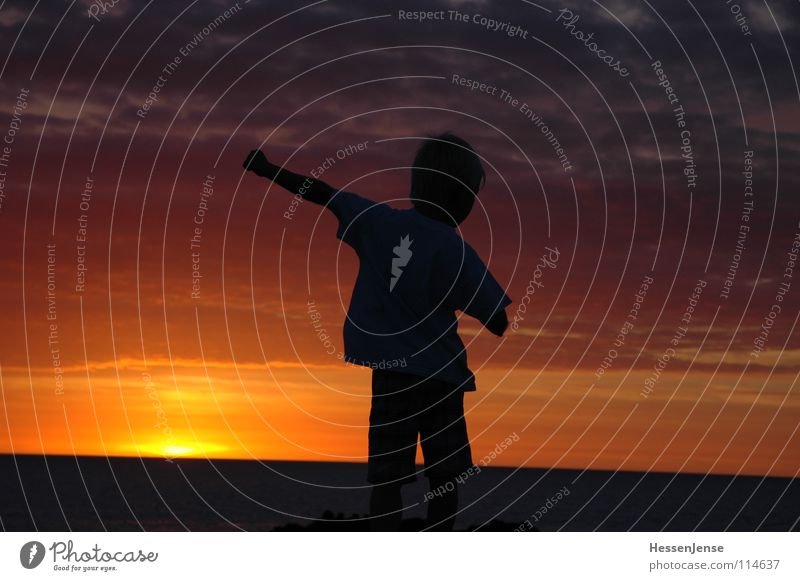 Sun Ocean Summer Joy Vacation & Travel Emotions Warmth Power Pure Optimism