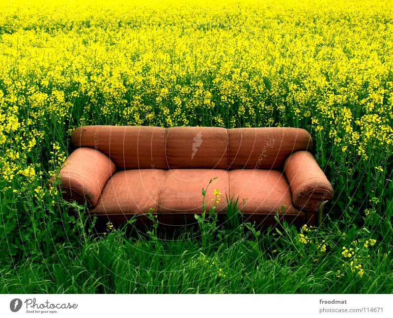 Why don't you sit down Meadow Relaxation Sofa Furniture Misplaced Canola Field Green Yellow Monstrous Empty Plant Seating Sleep Rest Living room Heavenly