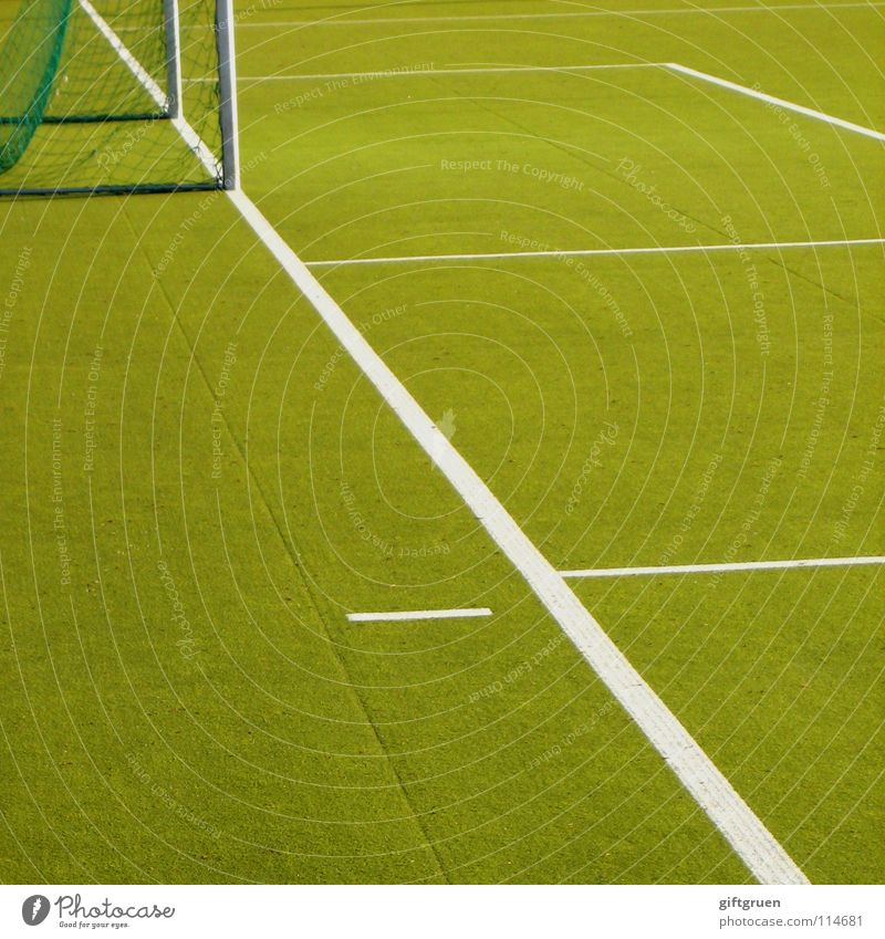 Green Sports Playing Line Leisure and hobbies Soccer Places Success Ball Lawn Net Gate Playing field Soccer player Audience Stadium
