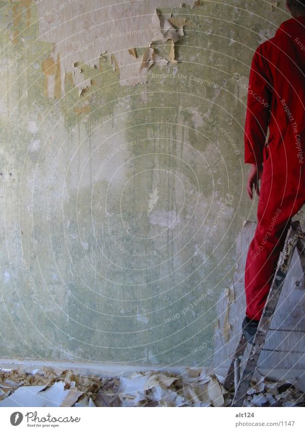 Red Work and employment Wall (building) Style Ladder Photographic technology