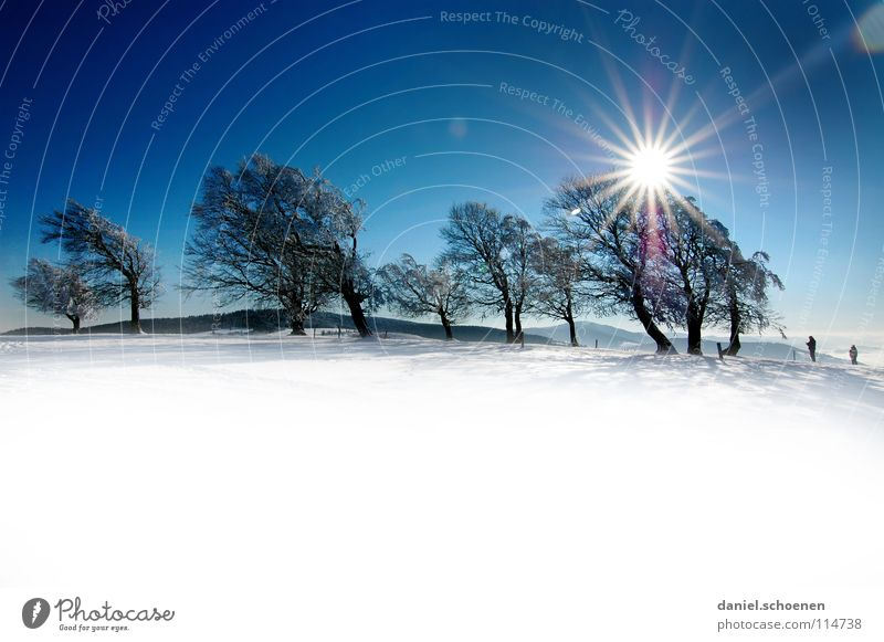 Christmas card 23 Sunbeam Winter Black Forest White Deep snow Hiking Leisure and hobbies Vacation & Travel Background picture Tree Snowscape Horizon Loneliness