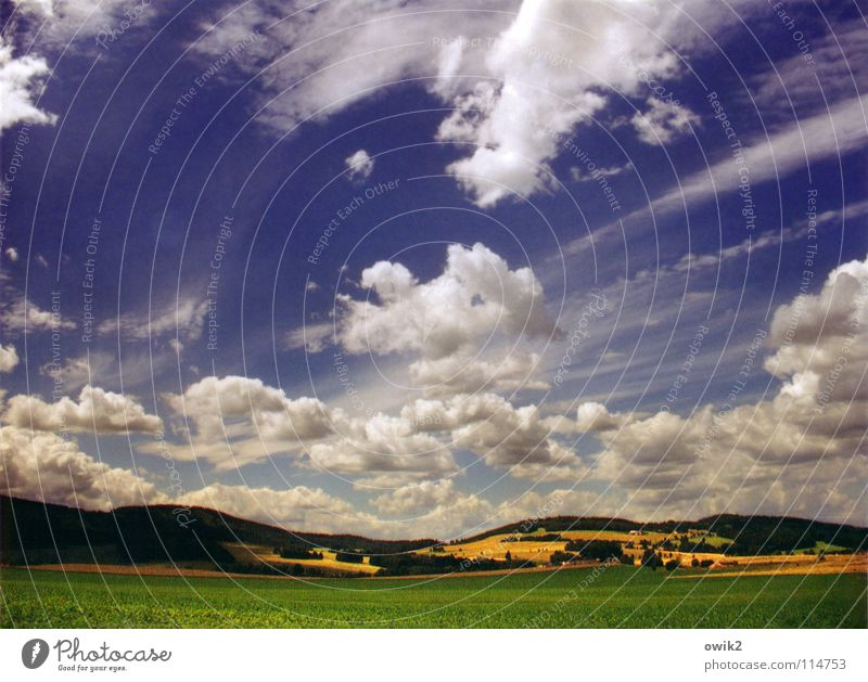 Sky over Hochkirch Panorama (View) Undulating Agriculture Field Meadow Forest Tree Clouds Dramatic Bad weather Wind In transit Cloud shadow Saxony Germany East