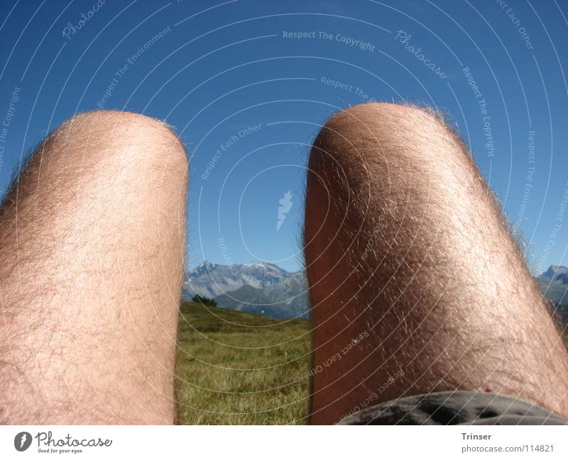 outlook or insight? Hiking Relaxation Break Summer stretch out a leg Nature Fatigue Legs Mountain
