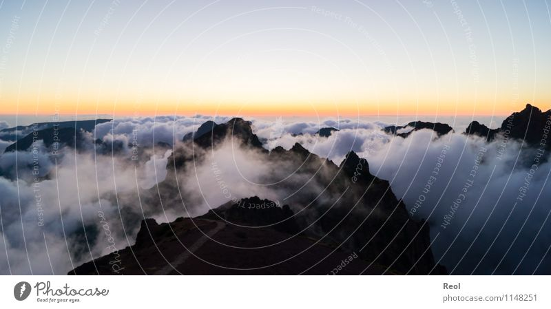Above the clouds IV Nature Landscape Elements Earth Sky Cloudless sky Clouds Sun Sunrise Sunset Summer Beautiful weather Hill Mountain Pico do Arieiro Peak