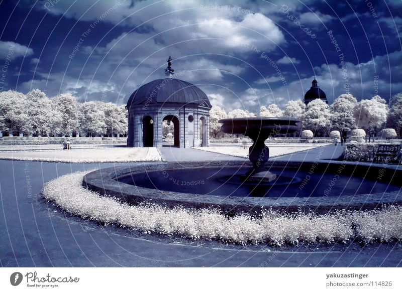 Water White Tree Meadow Grass Park Lawn Open Well Fountain Infrared