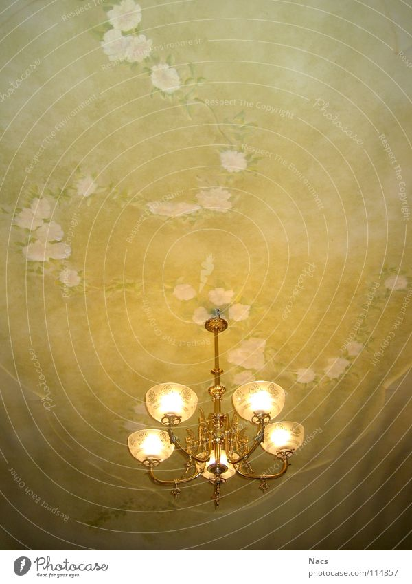 Ceiling lamp Lamp Ceiling fresco Tendril Flower Green Yellow Light Bright Room Design Nostalgia Lampshade Rose Progress Glittering Leaf Building Living room