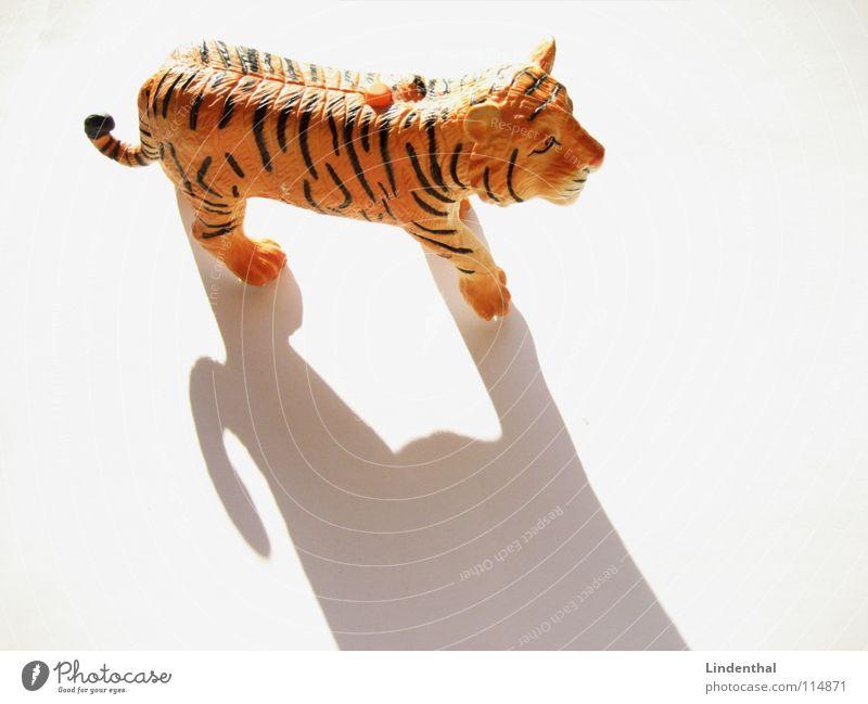 tiger Tiger Animal Land-based carnivore Pelt Striped Toys Evil Pushing Paw Tails Mammal Shadow Statue