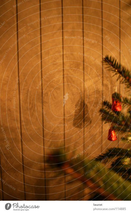 carillon Christmas & Advent Bell Night Dark Green Light Winter Decoration Fir tree Shadow Twig Evening Self portrait
