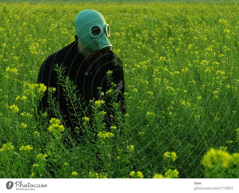 Hand Green Plant Flower Joy Black Yellow Landscape Gray Field Fear Arm Dangerous Planning Threat Mask