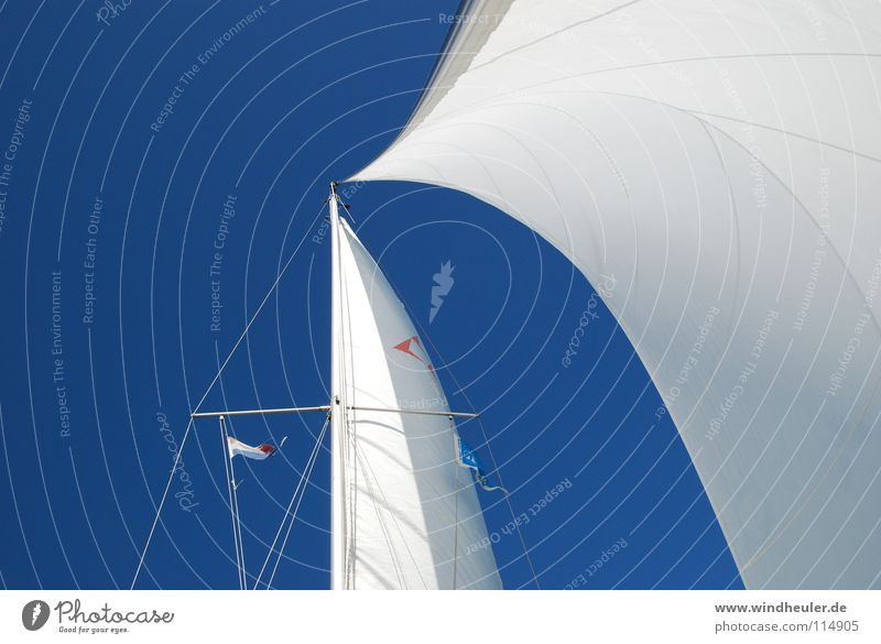 complete kit Sailing Blue sky Summer Blue-white Aquatics Wind crossing wind Day at the sea