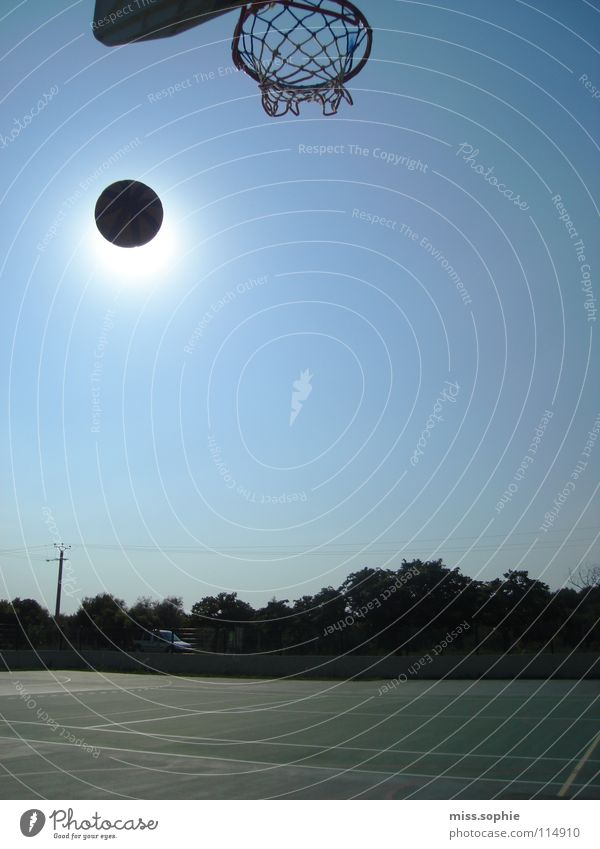 basket Colour photo Exterior shot Copy Space right Day Playing Freedom Summer Sun Sports Ball sports Sky Cloudless sky Beautiful weather Observe Movement Throw