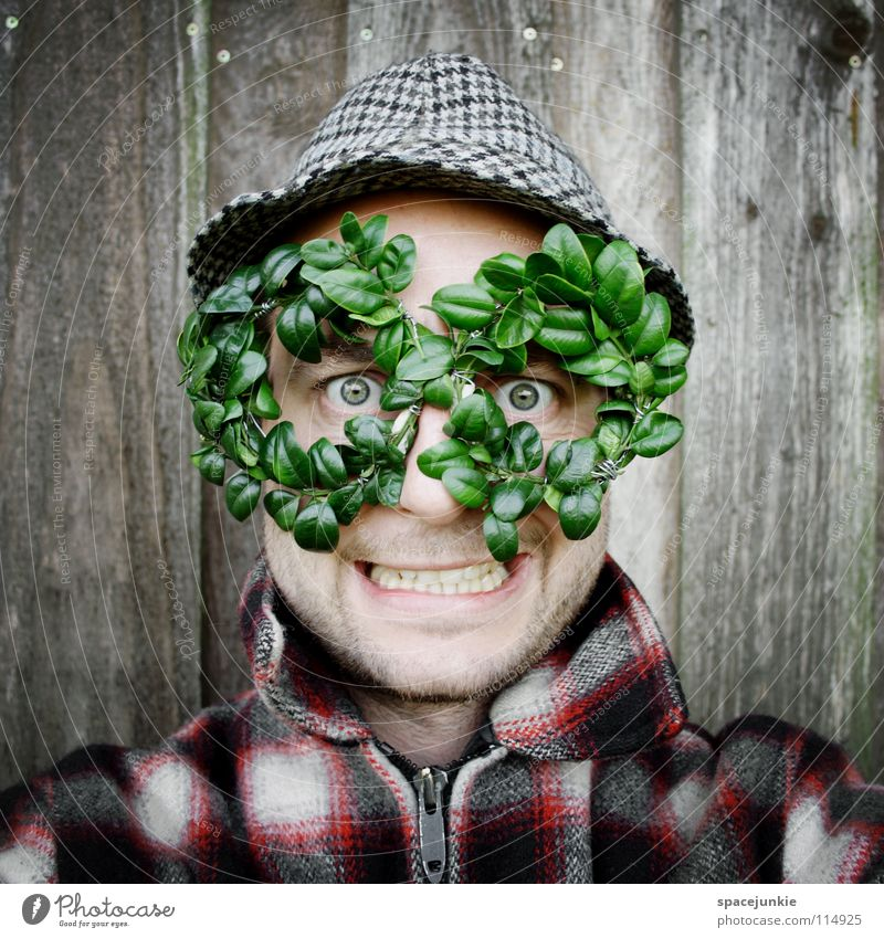 green glasses Man Portrait photograph Wall (building) Wood Eyeglasses Green Leaf Vista Freak Humor Whimsical Joy Hat Structures and shapes box Box tree Nature