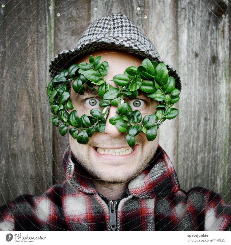 Man Nature Green Joy Leaf Wall (building) Wood Eyeglasses Hat Whimsical Clothing Freak Humor Vista Box tree