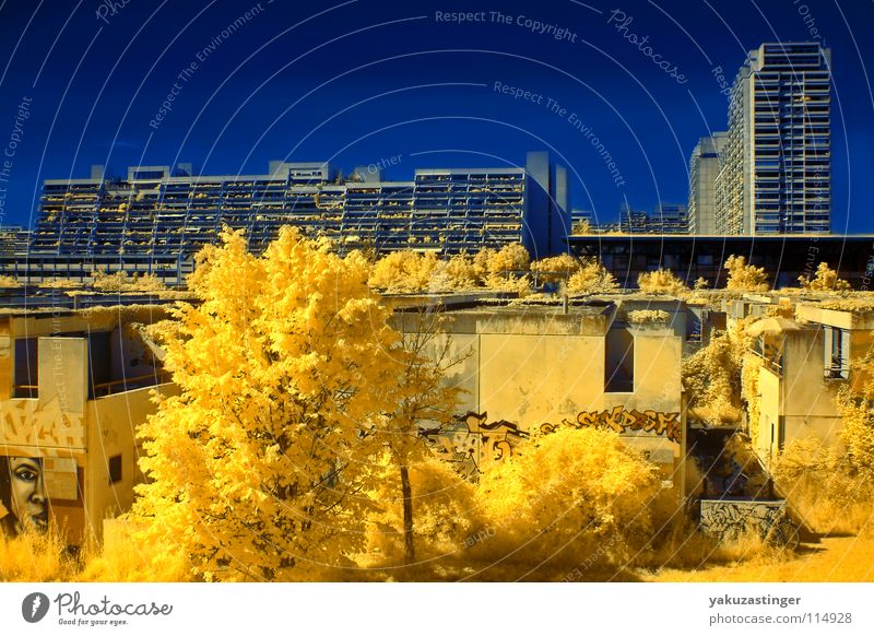 Tree Blue Yellow Munich Concrete Facade Bushes Balcony Israel Terror Bavaria Infrared Infrared color Olympic village