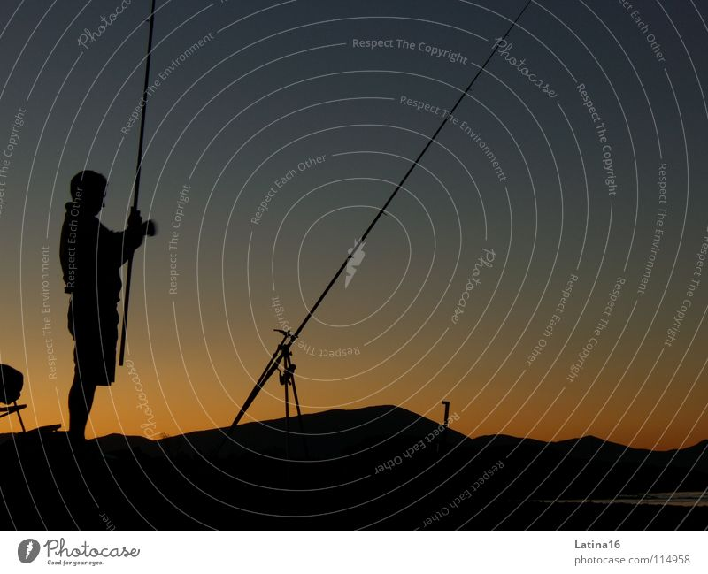 Leisure and hobbies Fish Italy Fishing (Angle) Angler Fisherman Fishing rod Naples