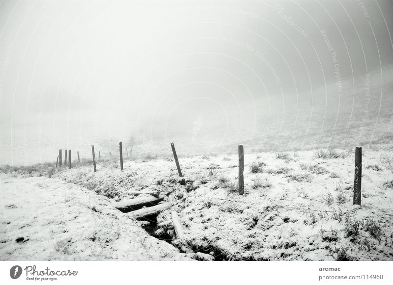 fog valley Fog Winter Black White Allgäu Black & white photo Mountain Landscape Snow Alps