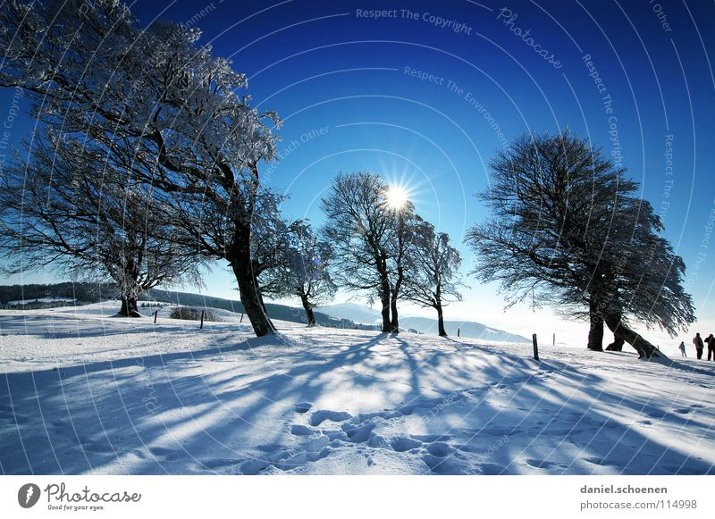 Christmas card 24 Sunbeam Winter Black Forest White Deep snow Hiking Leisure and hobbies Vacation & Travel Background picture Tree Snowscape Horizon Loneliness