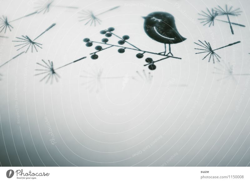Loneliness Black Sadness Funny Style Small Moody Bird Design Dream Leisure and hobbies Dirty Creativity Simple Idea Paper