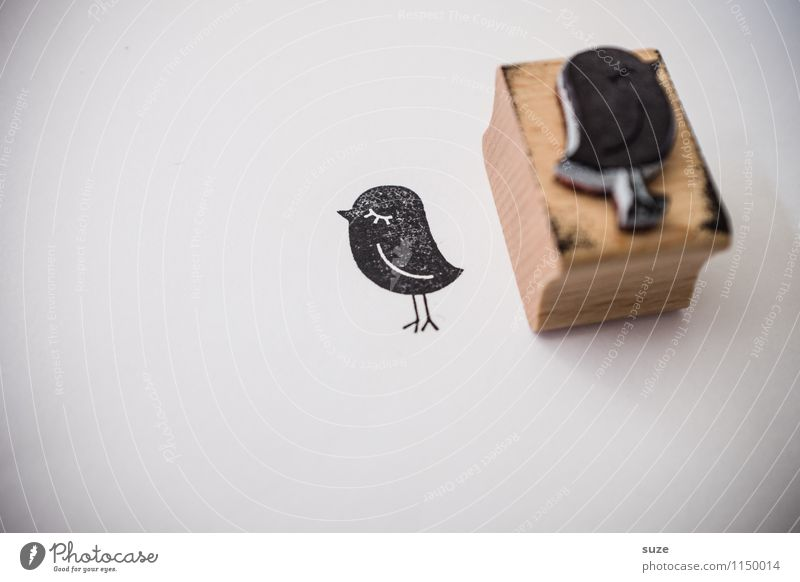 Black Funny Style Happy Small Lifestyle Bird Moody Design Leisure and hobbies Creativity Gift Idea Simple Cute Paper